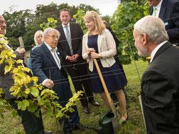 Höhepunkt der Veranstaltung: Chemie-Nobelpreisträger Prof. Crutzen (links) pflanzte eine Riesling-Rebe im Prominenten-Weinberg, direkt neben dem Rebstock von Friedensnobelpreisträger Lech Walesa.