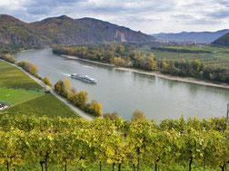 Zeitgeist Wine Tours Austria