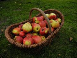 jus de pomme palais poitevin