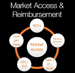 Healthcare Market Access Germany, Healthcare Device Access Germany