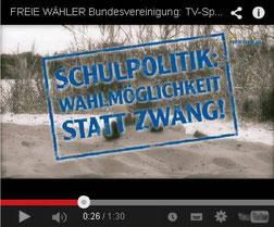 TV-Wahl-Werbespot 2013