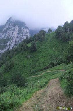 N°28/ Le Chemin d'Anitch au-dessus d'Esquit : fauchage nickel autant pour les randonneurs que pour les vététistes