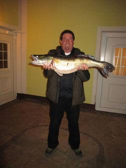 Kräftiges Petri Heil für Harry! Ein 5,60 kg, 82 cm Zander