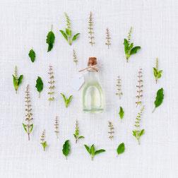 Composizione con piante officinali e boccettina di liquido