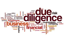 M&A: Merger and Acquisition - vendor due diligence, financial fact book