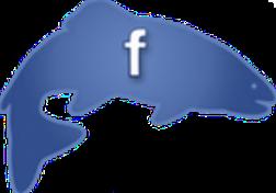 Tik op het logo voor FaceBook
