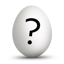 egg burhøns frittgående økologisk
