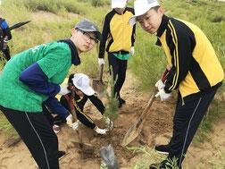 砂地にスコップで穴を掘り、1 本ずつ植えていく。慣れない作業に戸惑いながらも友だちと協力してやり遂げた