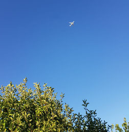 Flugzeug über Lochau