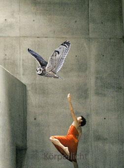 Freier Tanz in Bern, Sarah Urscheler, Tanzimprovisation