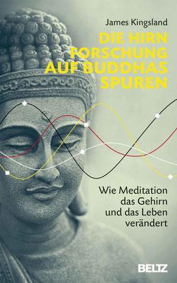 Die Hirnforschung auf Buddhas Spuren - Wie Meditation das Gehirn und das Leben verändert von James Kingsland - Buchtipp Meditation