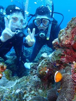 石垣島でのんびり体験ダイビング「縁あって」ヒートハートクラブ