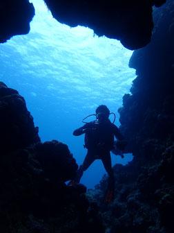 石垣島でのんびりダイビング「プライベートコース」