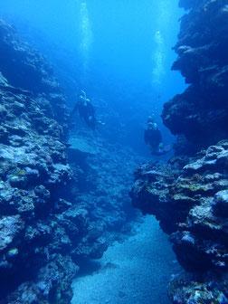 石垣島でのんびりダイビング「地形ポイント」