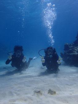 石垣島でのんびりダイビング「体験2ダイブ」