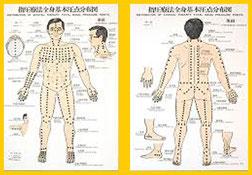Puntos de acupuntura Shiatsu Digitopuntura Herbolario El Alquimista Arrecife Lanzarote