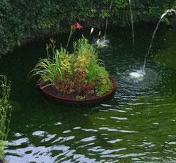 Maulwurffreier Bereich - Insel-Botanik