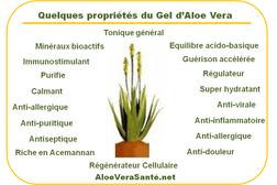 quelques propriétés de l'aloe vera de qualité