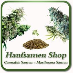 Hanfsamen Shop