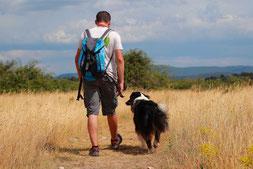 Mann und Hund beim Spaziergang während Verhaltenstherapie