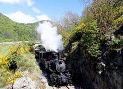 le maestrou, une locomotive à vapeur qui passe le long de gorge pour une excursion à la journée par le gite du domaine de la gorre à louer en ardéche