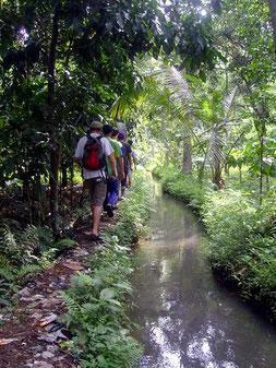 path alongside a creek