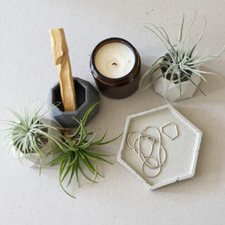 Geometric Air Plant Holder Trio by PASiNGA