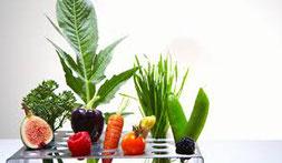 Micro-nutrition Naturopathie Aude Carcassonne Castelnaudary Limoux