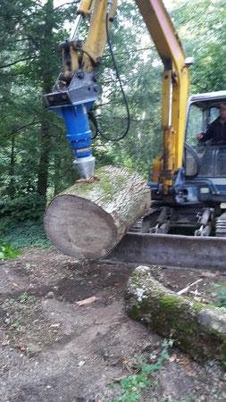 Holz verarbeiten