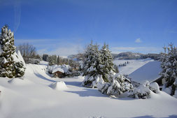 Winter in Todtnauberg
