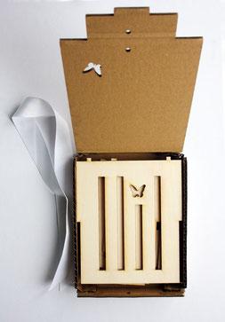DIY BAUSATZ in der Geschenksverpackung aus wiederverwendetem Karton
