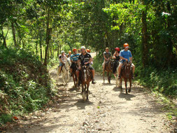 Horseback to La Fortuna Waterfall