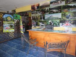 Oficina Principal Arenal Evergreen