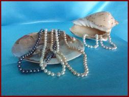Perliculture : perles d'eau douce et d'eau de mer