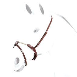 BR41: Irisches Reithalfter aus Sedwick-Leder mit Nasenriemen aus Leder