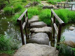 Es gibt immer einen Weg. Deinen Weg!