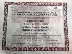 Attestato di vincita del Premio FEI 2016