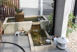 メダカの水槽
