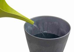 comment arroser les orchidées avec le dispositif d'arrosage OriCine® 2