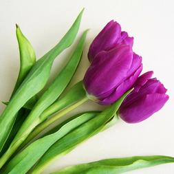 im Jänner hilft die Farbe VIOLETT, dich zu zentrieren. Mehr dazu im SOULGARDEN Blog