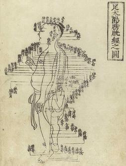 Akupunkturpunkte TCM