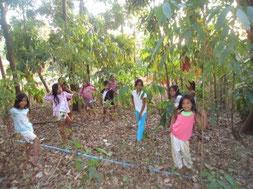 木々のまわりに集まる子どもたち