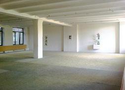 Aikidoschule Berlin - im Aikido Dojo am Gleisdreieck 2009-2012