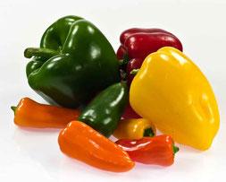 Il peperone, un antiossidante per ogni colore