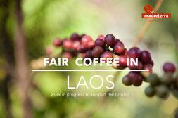 progetto Laos madreterra caffe