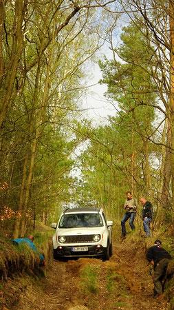 Hin und wieder anspruchsvolle Waldpisten