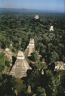 Vue aérienne de Tikal