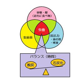 虫歯になる要因の図 カイスの輪
