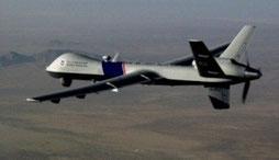 "Dronefly type ""predator"""