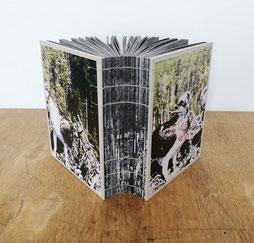 © Léa Habourdin, artbook, edition, reliure, livre d'art